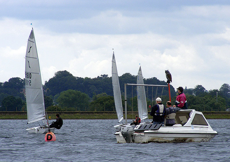 Solo Sailing Open 2011 0118 (C)Nick Marley