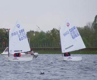 James and Jack racing Optimists at Island barn reservoir sailing club