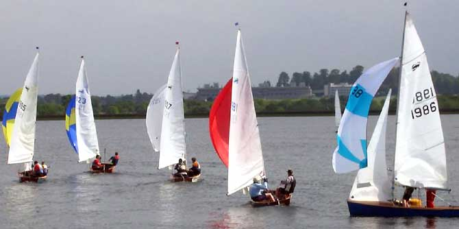 scorpian dinghy racing at island barn reservoir sailing club